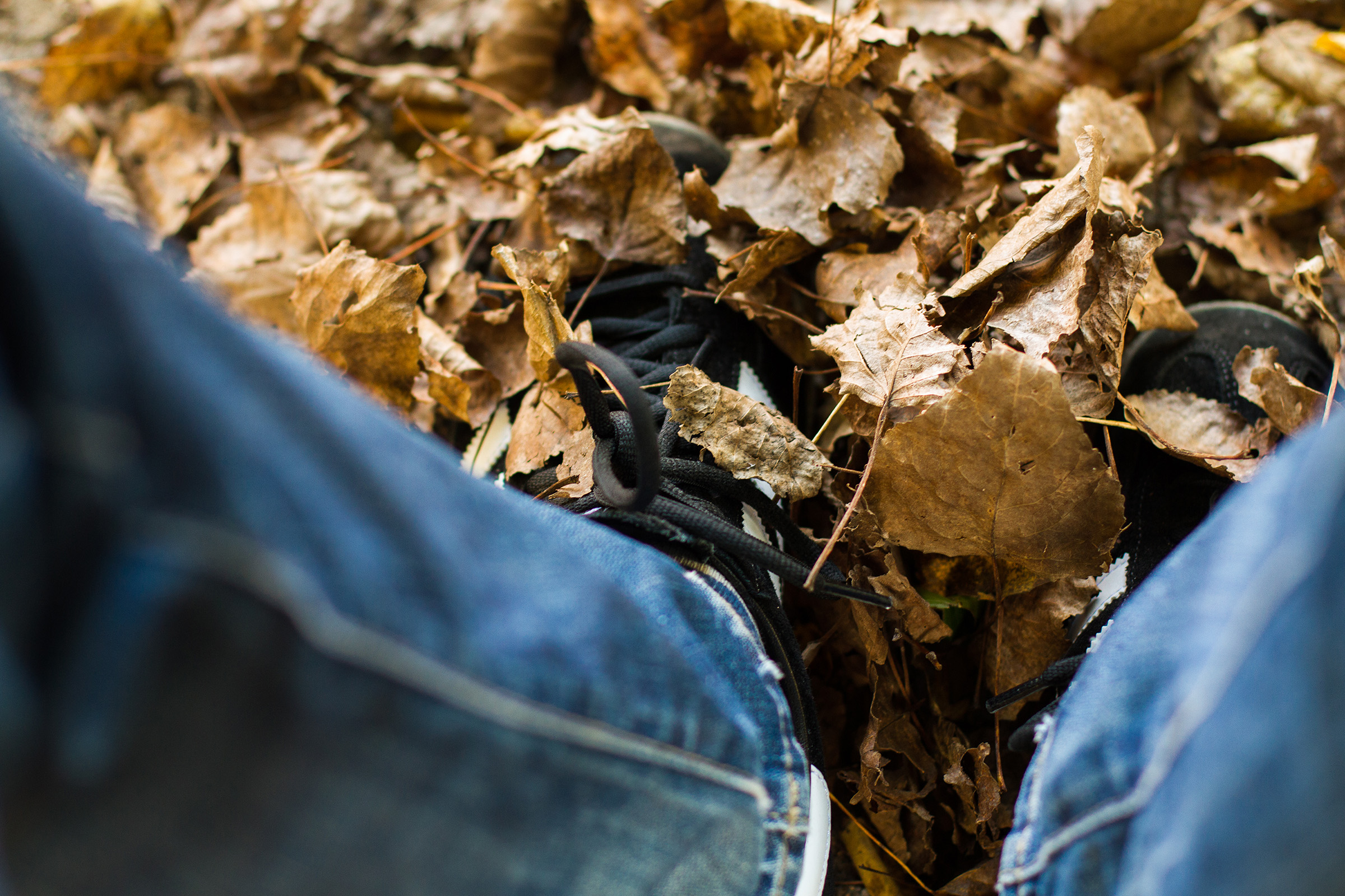 man, male, self, selfpic, selfportrait, leafs, autumn © André Schunert